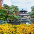 Ginkakuji - The Silver Pavilion Temple in Kyoto — Stock Photo #42378155