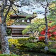 Ginkakuji - The Silver Pavilion Temple in Kyoto — Stock Photo #42378535