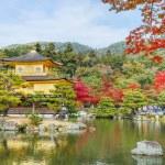 Kinkuji - The Golden Pavilion in Kyoto — Stock Photo #42378975