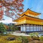 Kinkuji - The Golden Pavilion in Kyoto — Stock Photo #42379111