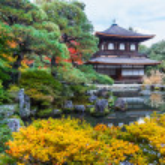 Ginkakuji - The Silver Pavilion Temple in Kyoto — Stock Photo
