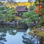 Chisen-kaiyushiki, Pond-stroll garden in Ginkaku-ji temple in Kyoto — Stock Photo #42579041