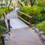 Chisen-kaiyushiki, Pond-stroll garden in Ginkaku-ji temple in Kyoto — Stock Photo #42579273