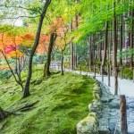 Chisen-kaiyushiki, Pond-stroll garden in Ginkaku-ji temple in Kyoto — Stock Photo #42826499