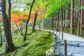 Chisen-kaiyushiki, lagoa-passeio no jardim ginkaku-ji, em quioto — Foto Stock