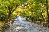 Schody w ryoan-ji rozciągacz w kioto — Zdjęcie stockowe