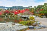 Maruyama Koen (Maruyama Park) in autumn, in Kyoto — Foto Stock