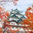 Nagoya Castle in Autumn — Stock Photo #44335379