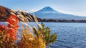Mt. Fuji at Lake Kawaguchiko in Japan — Stock Photo
