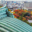View from Nagoya Castle — Stock Photo #44726095