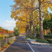 Walking Path along side Nagoya Castle in Nagoya — Stock Photo