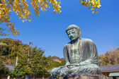 Daibutsu - The Great Buddha of Kotokuin Temple in Kamakura, Japan — Stock Photo