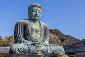 Daibutsu - The Great Buddha of Kotokuin Temple in Kamakura — Stock Photo