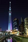 Albero del cielo di tokyo — Foto Stock
