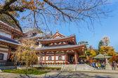 Hasedera Temple in Kamakura — Stock Photo