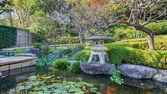 A Garden at Hasedera Temple in Kamakura — Stock Photo