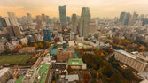 View From Tokyo Tower — Stock Photo