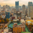View From Tokyo Tower in Japan — Stock Photo #48219523