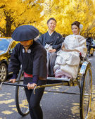 Japanese Groom and Bride at Icho Namuki Avenue in Tokyo — Stock Photo