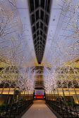Tokyo, Japan - November 26 2013: Lights and illuminations are de — Foto Stock