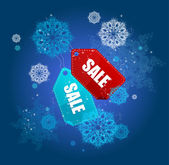Sale labels winter set vector — Stock Vector