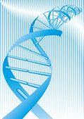 DNA spiral — Stock Vector