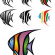 Stock Vector: Illustrated angelfish