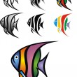 Illustrated angelfish — Stock Vector #25238409