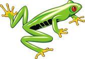 Tree frog — Stock Vector