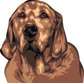 Ilustrowany pies — Wektor stockowy