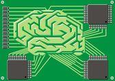 Brain as motherboard — Stock Vector