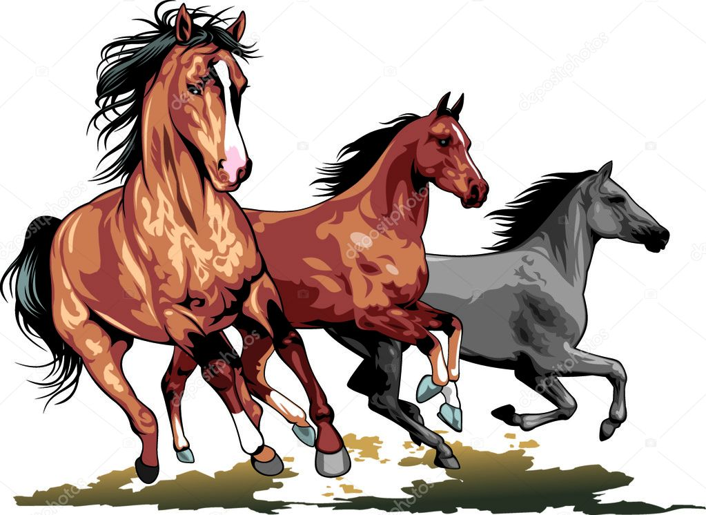 Horse vector png