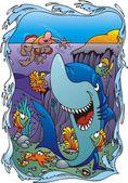 Shark in the water — Stock Vector