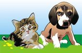 Cat and dog are friends — Vector de stock