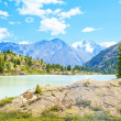 Mountain landscape with a glacial lake and pines — Stock Photo