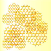 Miele, a nido d'ape — Vettoriale Stock