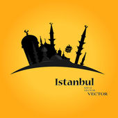 Istanbul Turkey — Stock Vector