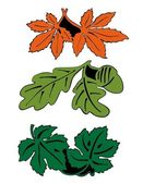 Leaves in pair — Stock Vector