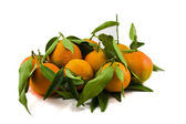 Mandarins with leafs — Stock Photo