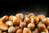 Dried Hazelnuts — Stock Photo