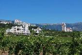 Crimea - Yalta — Stock Photo