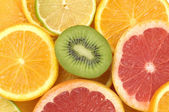 Sliced citrus collection — Stock Photo