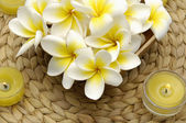 Frangipani flowers in basket — Stock Photo
