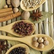 Spices in the spoons on straw background — Stock Photo