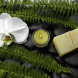 Stock Photo: Spa and aroma therapy setting