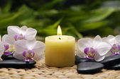 Spa still with orchid — Stock Photo