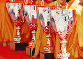 Trophies and ribbons — Stock Photo
