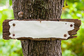 Weather-beaten old sign in the woods — Stock Photo