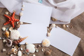 Shells and starfish with white papers — Stock Photo