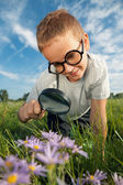 Child observing nature — Stock Photo